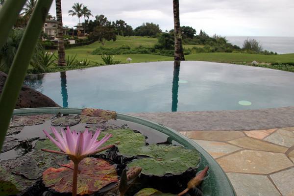 Visiting Kauai - November 2008